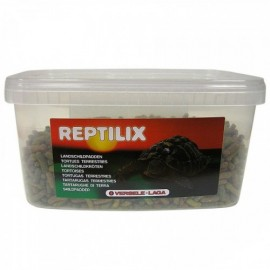 Reptilix Tortue